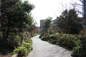 Nice garden path near Osaki Station