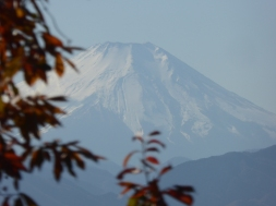 View of Mt. Fuji from Mt. Takao
