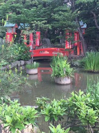Quiet water garden